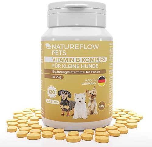 Complejo de Vitamina B Perros – B Vitaminas para perros a partir de 2 kg – 120 Comprimidos de vitaminas – Suplemento perro con K3, ácido fólico, calcio y biotina para perros – Made in Germany