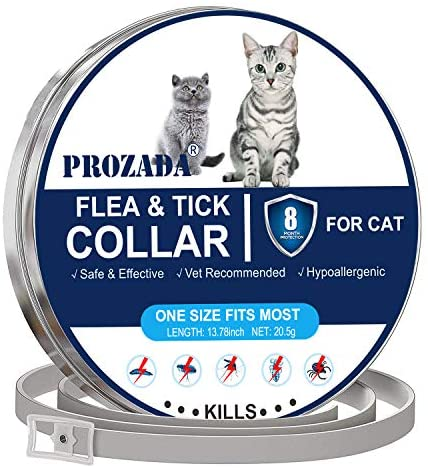 PROZADA Collar Antiparasitario para Gatos, 8 Meses de protección Stop Bichos y picazón, gregado con Aceites Naturales, Tamaño Ajustable e Impermeable (1)