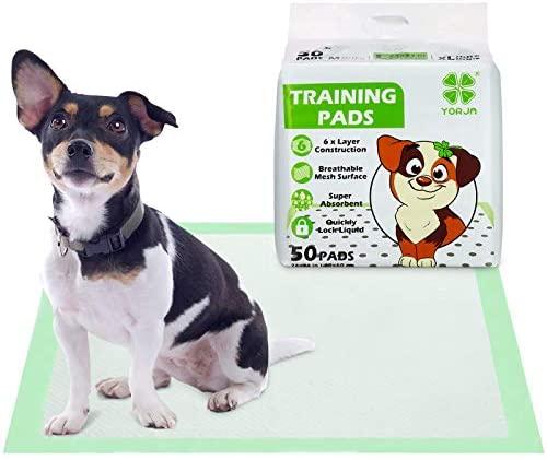 YORJA Empapadores Perros 50 unidades-60 x 60 cm Súper Absorbente Toallitas de Entrenamiento para Mascotas con Superficie de Malla Transpirable